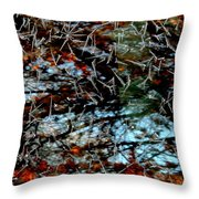 Autumn Frost Throw Pillow