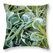 Frost On Strawberry Leaves Throw Pillow