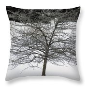 Frost On The Hawthorne Throw Pillow