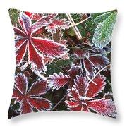 Frost On Wild Strawberry Throw Pillow