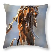 Frosted And Wilted Throw Pillow