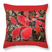 Frosted Blueberry Leaves Throw Pillow