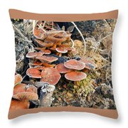 Frosted Cascading Mushrooms Throw Pillow
