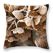 Frosted Hydrangea Throw Pillow