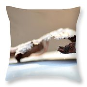 Frosted Leaf Abstract Throw Pillow
