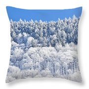 Frosted Mountainside Throw Pillow