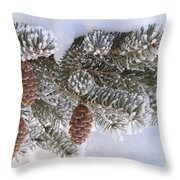 Frosted Pine Tree And Cones 1 Throw Pillow