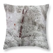 Frosted Pines Throw Pillow