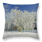 Frosted Trees - Newton Road Park Throw Pillow