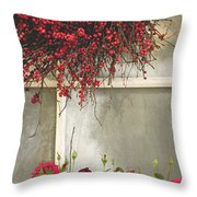 Frosted Windowpane Throw Pillow