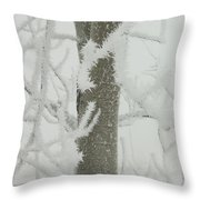 Frosty Branches Throw Pillow