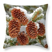 Frosty Cones Throw Pillow