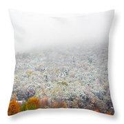 Frosty Fall Throw Pillow