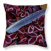 Frosty Feather Throw Pillow