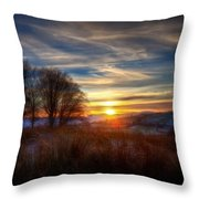 Frosty Grasses Throw Pillow