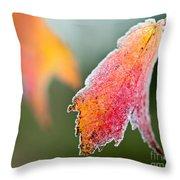 Frosty Leaf Throw Pillow