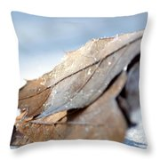 Frosty Leaves In The Morning Sunlight Throw Pillow