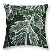 Frosty Leaves Macro Throw Pillow
