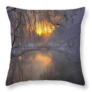 Frosty Morn 2 Throw Pillow