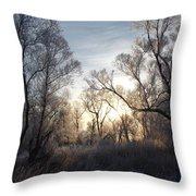 Frosty Morn 3 Throw Pillow