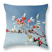 Frosty Morn Throw Pillow