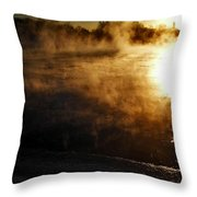 Frosty Morning ... Throw Pillow