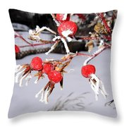 Frosty Rosehips Throw Pillow