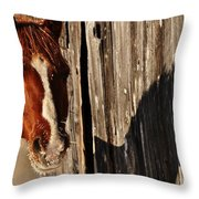 Frosty Shadow Throw Pillow