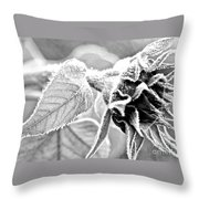 Frosty Textures Throw Pillow