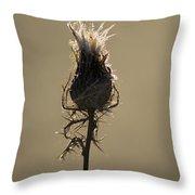 Frosty Thorns Throw Pillow