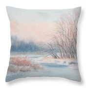 Frosty Toes At Catfish Corner Throw Pillow