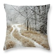 Frosty Trail 2 Throw Pillow