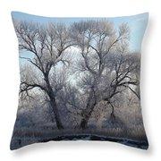 Frosty Trees 4 Throw Pillow