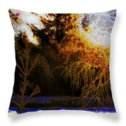 Frosty Winter Morning Throw Pillow