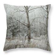 Frosty Wonderland Throw Pillow