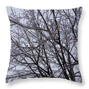 Frozen 5 Throw Pillow