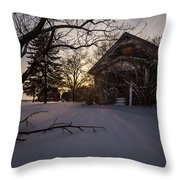 Frozen And Forgotten 2 Throw Pillow