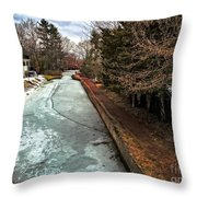 Frozen Canal Throw Pillow