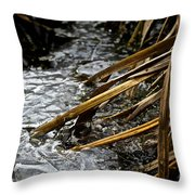 Frozen Edges And Ends Throw Pillow