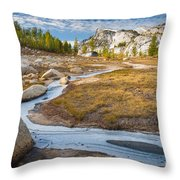 Frozen Enchantments Creek Throw Pillow