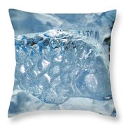 Frozen Fish Of The Northern Forests Throw Pillow