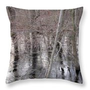 Frozen Forest Floor Throw Pillow