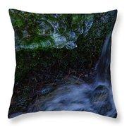 Frozen Garden Stream Throw Pillow