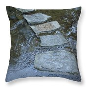 Slippery Stone Path Throw Pillow
