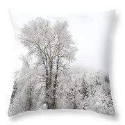 Frozen Giant Throw Pillow