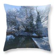 Frozen Iseland Throw Pillow