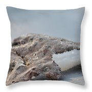 Frozen Leaf Throw Pillow