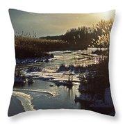 Frozen Marsh Throw Pillow