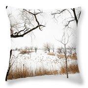 Frozen Marshland IIi Throw Pillow