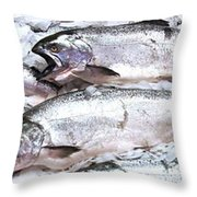 Frozen Migration Throw Pillow
